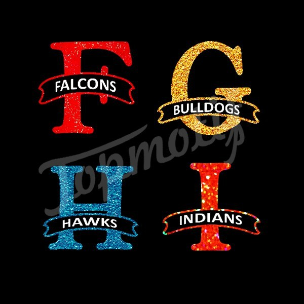 Falcon Hawks Indians Dulldogs Sport Team Logo Design Heat Transfer Vinyl