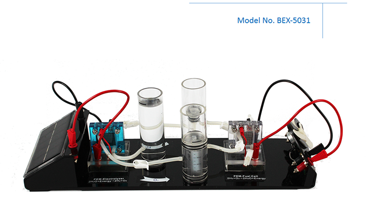 Physics Class Hydrogen Oxygen Fuel Cell