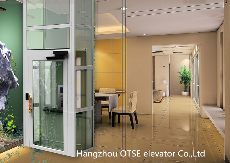 Otse Top Quality 2 Person Cheap Diy Home Elevator For