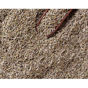 BBQ Spices 99% Pure India Cumin Seed Export Price