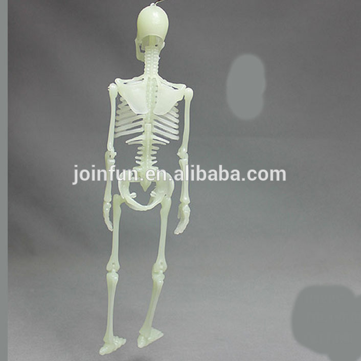 custom people skeleton toys,lifelike human skeleton toy figure,oem, Skeleton