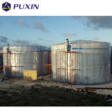 PX-ABS-15M3 Biogas Plant System for Dairy Farm to Generate