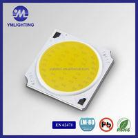 Led Encapsulation White Color 6500K 50W White Color Cob Led Epistar Chip Diodes