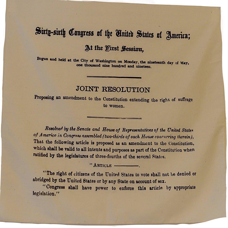 19th Amendment (Women's Right to Vote) Bandana/Scarf