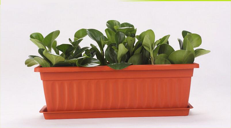 balcony vegetable pot rectangle flower pot courtyard plant