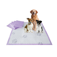 Top Sale Economy 60*60cm Pet Puppy wee wee Training Pad for easy housebreaking pets