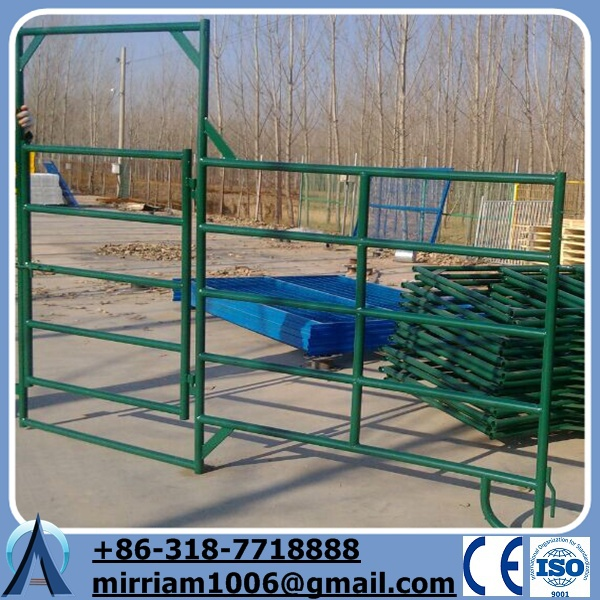 type strong steel pipe livestock fence ,Galvanized pipe livestock metal corral fence panels for horses