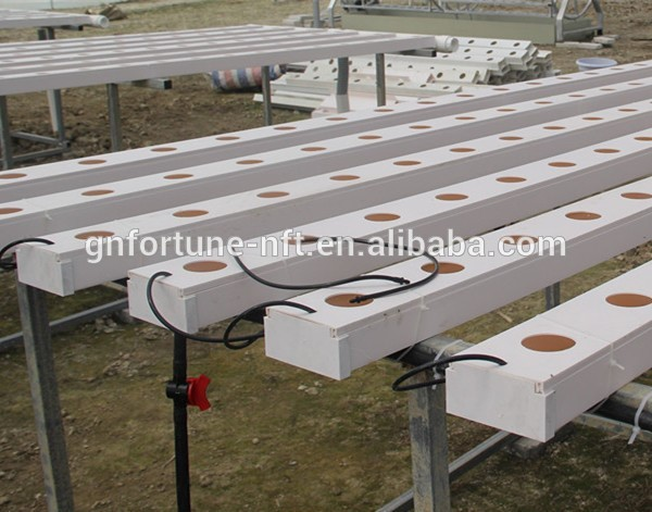 Import China Products Hydroponic Grow Systems Aquaponic