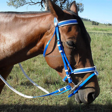Horse racing equipment colorful horse double bridle
