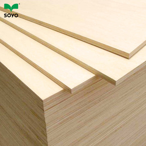 Factory AA grade 19mm maple plywood price for sale