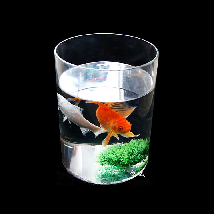 simple fashionable clear acrylic cylindrical marine aquarium buy