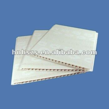 Pvc Tongue And Groove Ceiling Panels Buy Plastic Ceiling