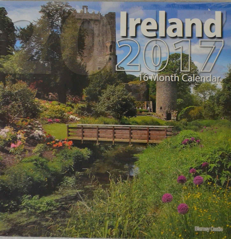2017 16-Month 12 x 12 Wall Calendar - Ireland
