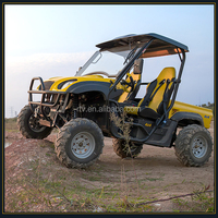 eec approved electric dune buggy