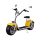 2017popular pizza delivery fat big alloy wheel 1500w citycoco electric scooter