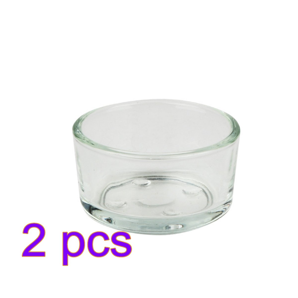 Petforu Reptile Food Dish, 2 Pack Mealworms Dish Mini Reptile Water Bowl GLASS