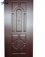 High quality for new design door skin with cheap price