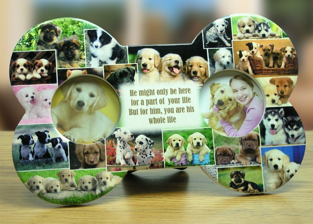BANBERRY DESIGNS Pet Memorial Frame - Dog Bone Shaped Frame with 2 Picture Openings - Dog Photo Plaque