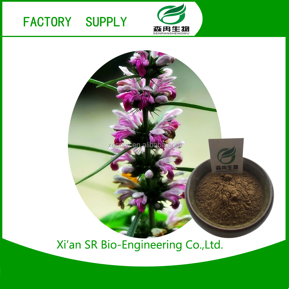 Wholesale Chinese Herb Extract Motherwort Extract For Sale