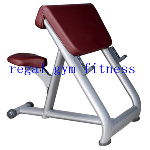 Luxury Quality Preacher Curl Professional Body Action System /Fitness Equipment Sydney for sale