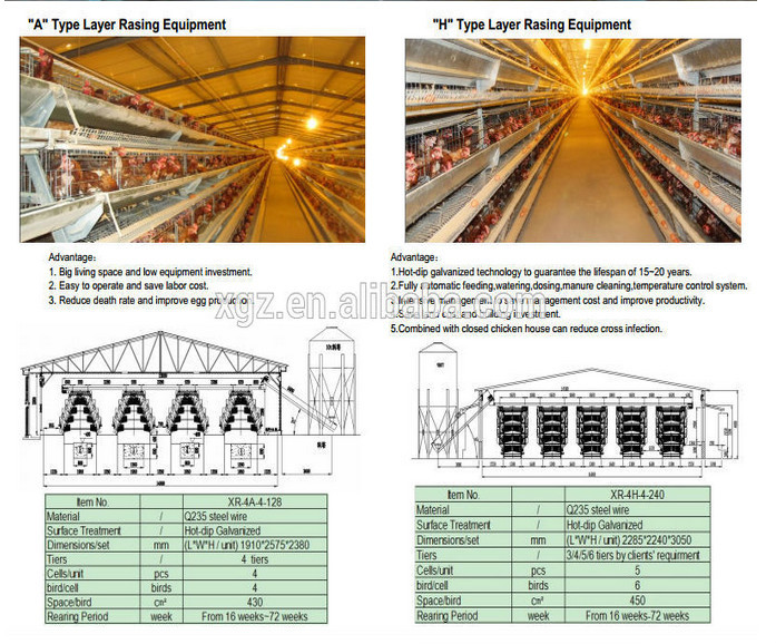 Egg chicken house design for layers/commercial chicken house/electostatic spray chicken house