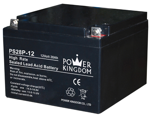 Power Kingdom lead acid battery charging factory fire system-2
