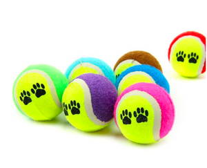 Fine Pet Products Run Catch Throw Play Funny Chew Pets Toys Levert Dog Cat Toy Vogue Tennis Balls