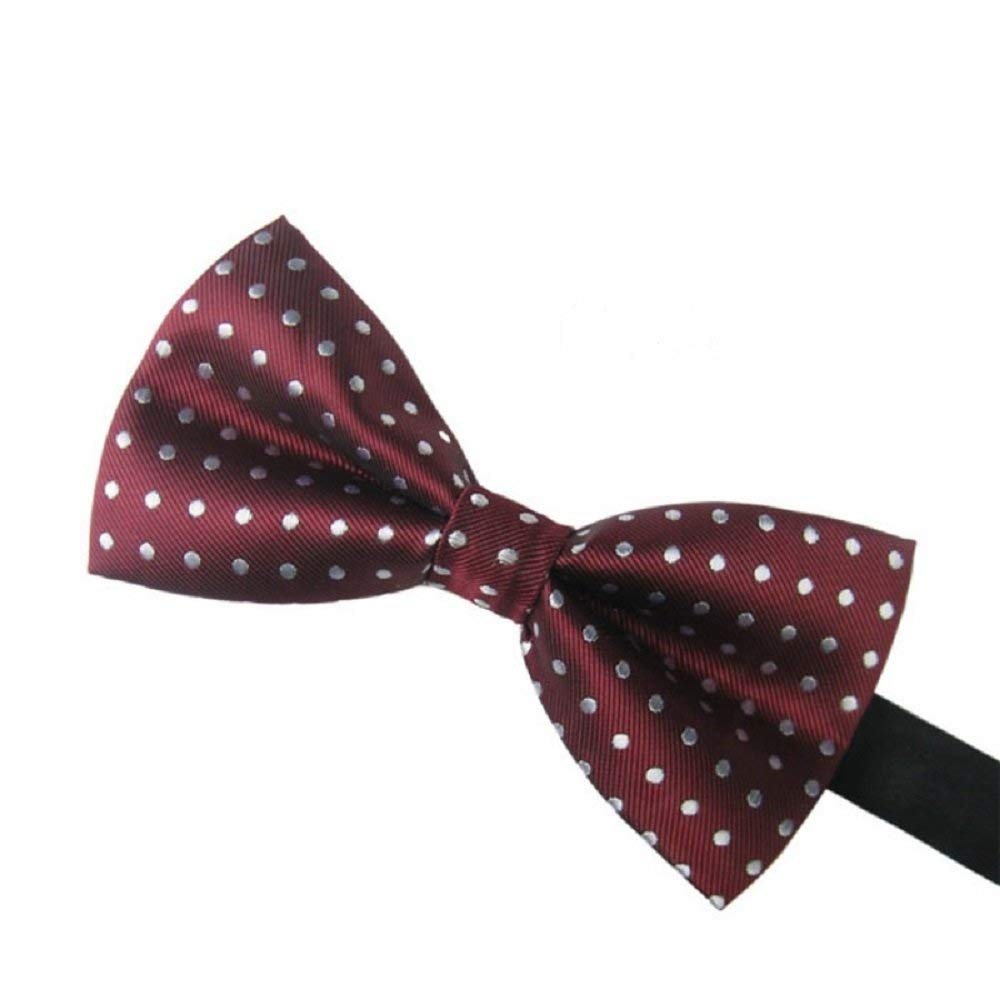 Burgundy & Silver White Polka Dot Men's Bow Tie