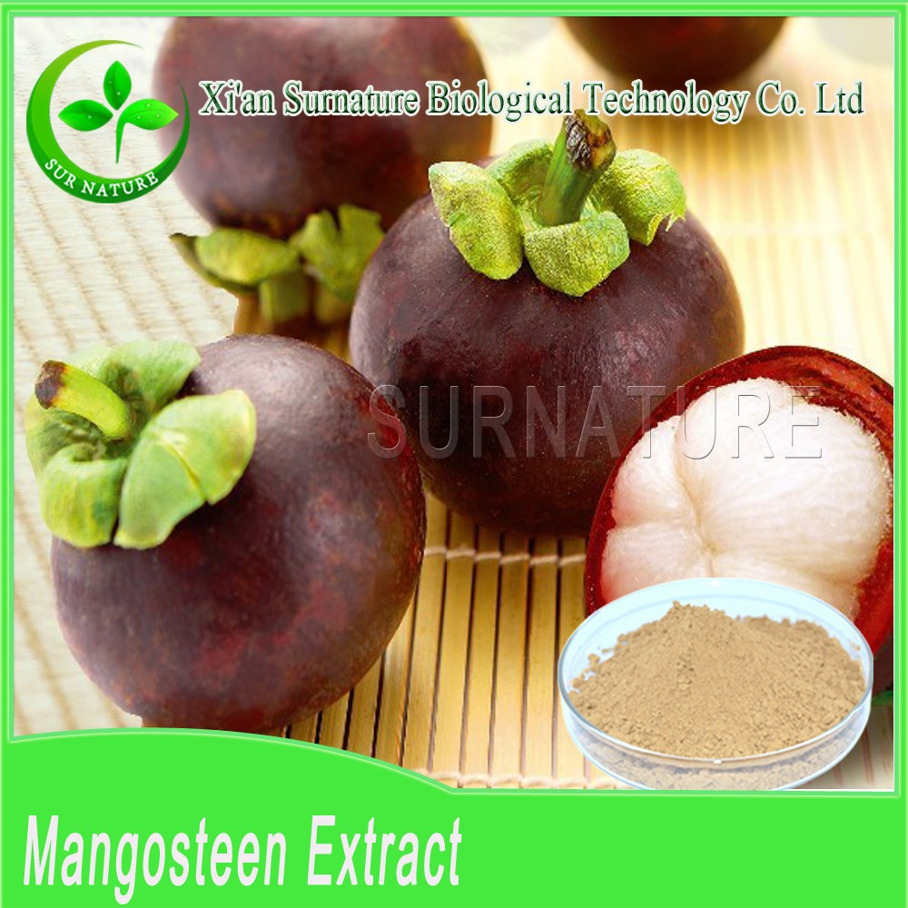Factory sell 100% natural organic Mangosteen Ext wholesale