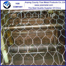 hot sale anping hexagonal wire mesh hot dipped galvanized hexagonal mesh (factory)