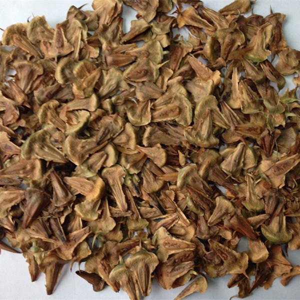 Heritage Seeds 15