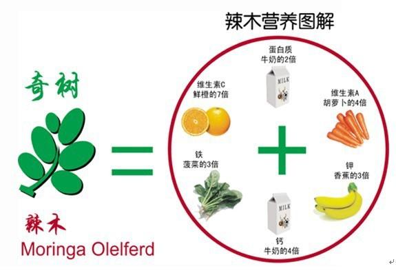 High Quality Organic Moringa Leaf Powder,Bulk Moringa Powder