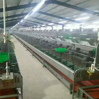 automatic rabbit farming equipment
