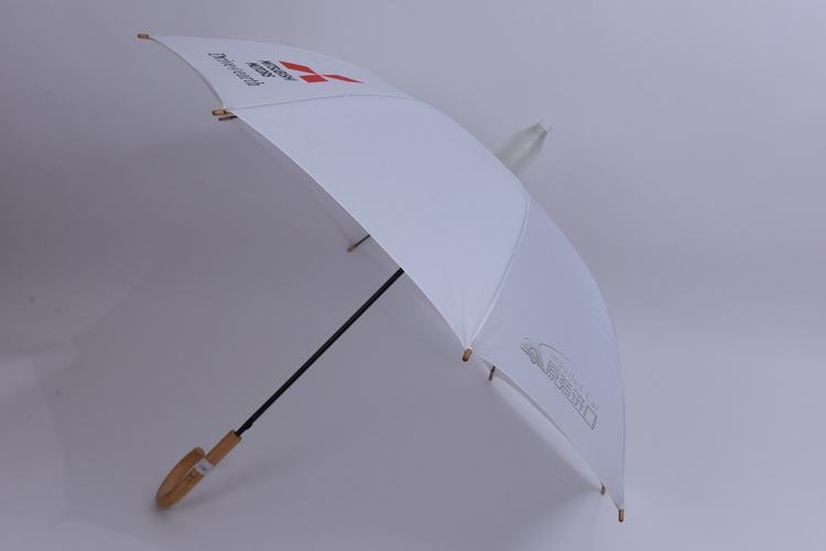 2016 High Quality water repellent auto open umbrella with wood handle