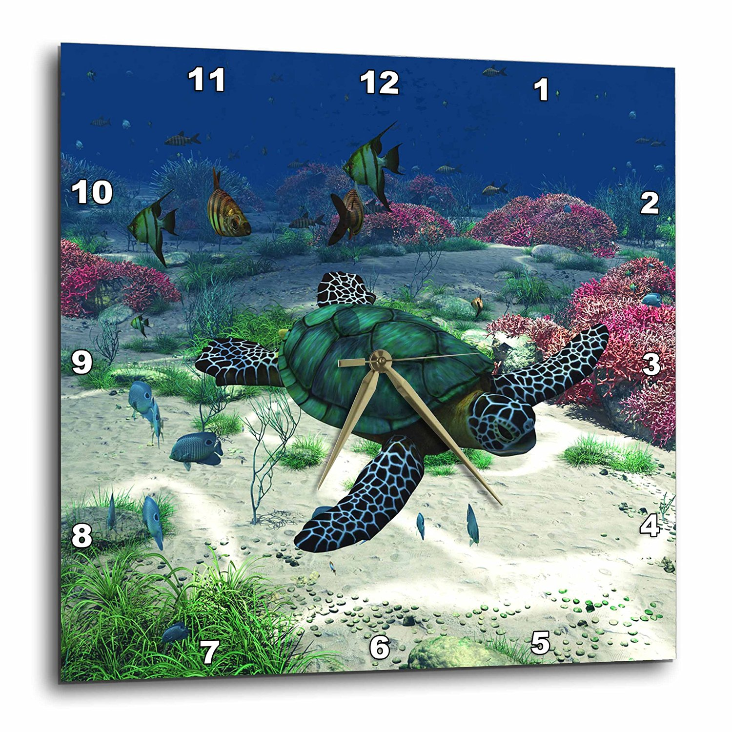 Simone Gatterwe Designs Sea Life - Sea turtle swims through the ocean with tropic fishes corals and more - 13x13 Wall Clock (dpp_172910_2)