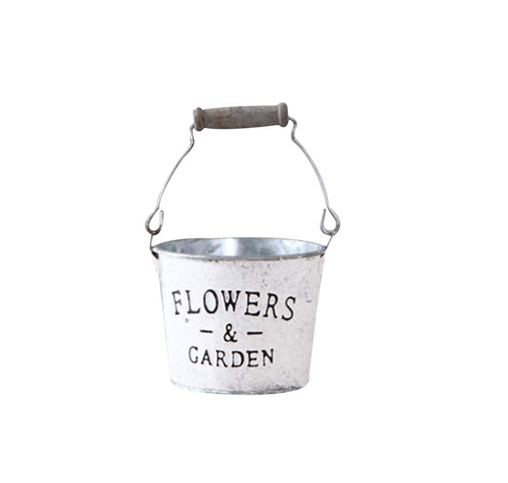 Panda Superstore N# Vintage Style Succulent Plant Iron Pots Decorative Flowerpot