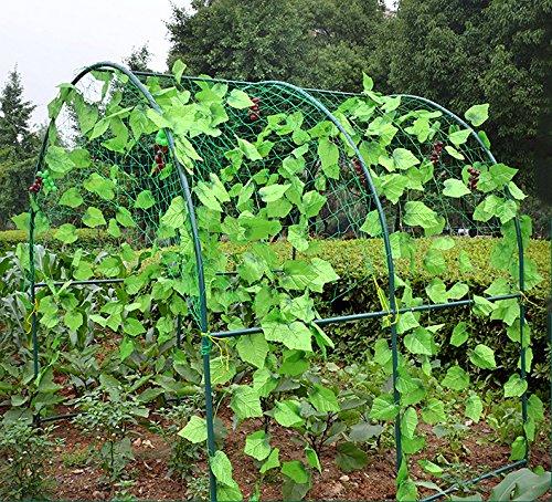 """Mr Garden Heavy-duty PE Plant Trellis Netting Green Garden Netting 3.94""""-36 W8'xL7'"""
