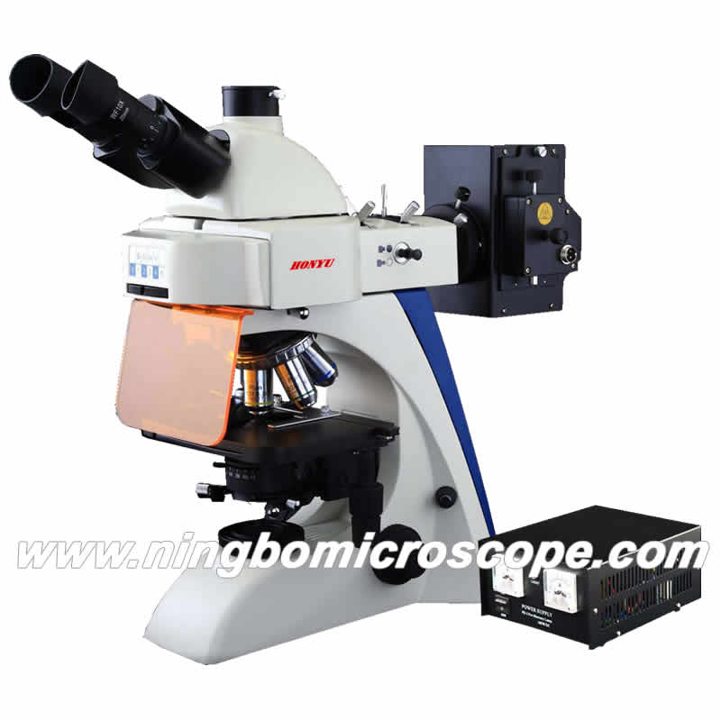 FLU.12.KL2 Fluorescence Microscope