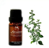 Good Qualty Hair Care Aromatic Oils Melissa Essential Oil 100% Pure And Natural Reduce Stress And Calm The Mind