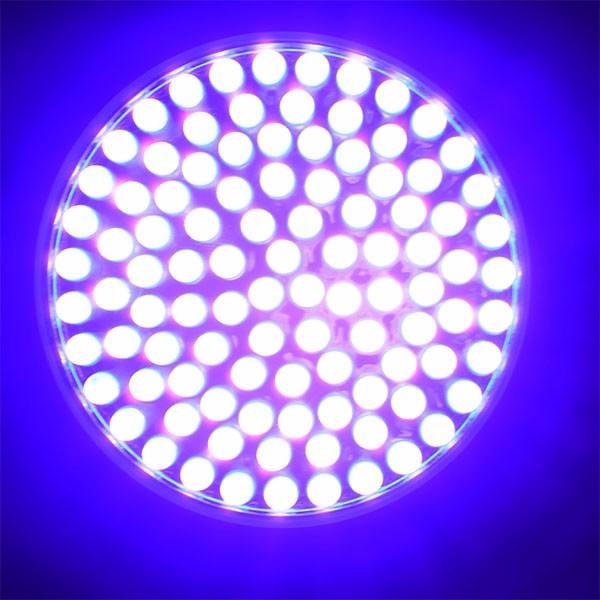 Uv Flashlight Black Light 100 Led Handheld Purple Light