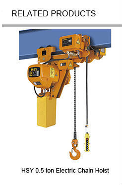 China Supplier 1ton Electric Chain Hoist With Remote Control