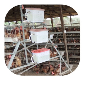 A type nipple drinking chicken battery cage for layer in Nigerian poultry farm