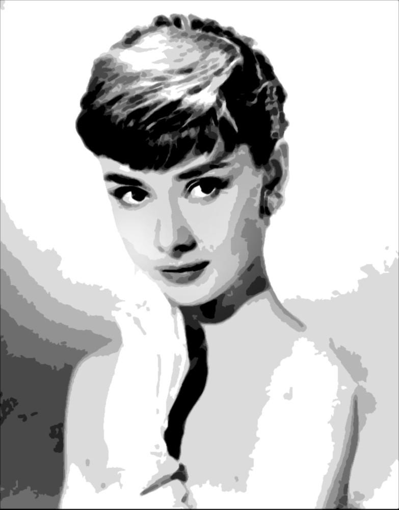 Audrey Hepburn Black And White Pop Art Oil Paintings Buy Pop Art