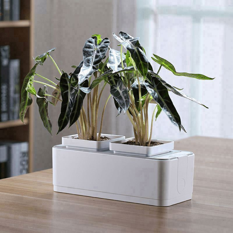Silver Plant Pot, Silver Plant Pot Suppliers And Manufacturers At  Alibaba.com