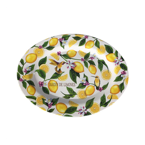 Well Dressed Home Melamine Dinner Plates oval shape multiple orange printing