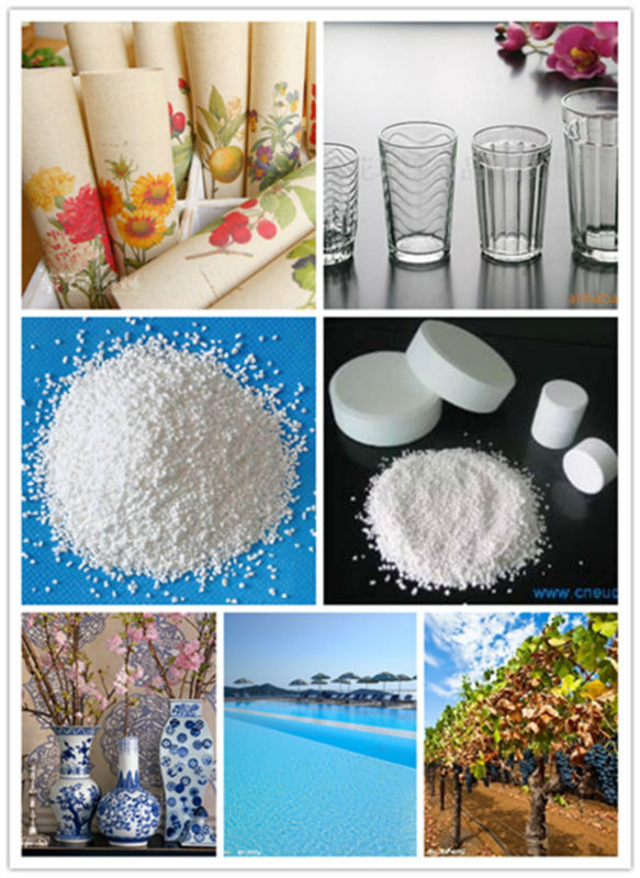 China supplier sodium dichloroisocyanurate SDIC 56%& 60% (GOLDEN-CHLOR) for water softening unit