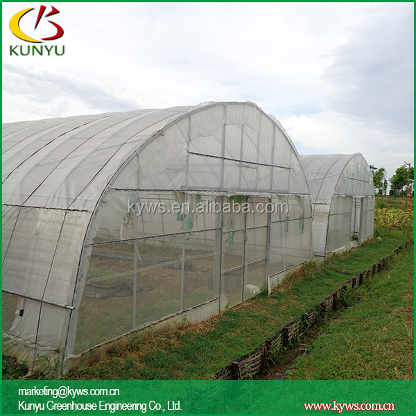 Arch Roof Type Tunnel Greenhouse Plastic Greenhouse Cover ...
