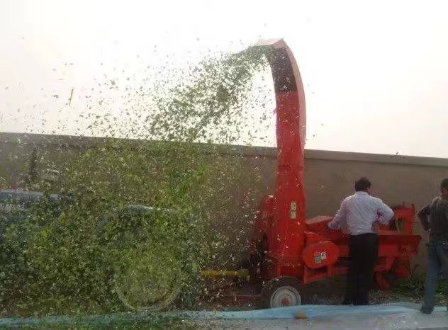 corn silage making