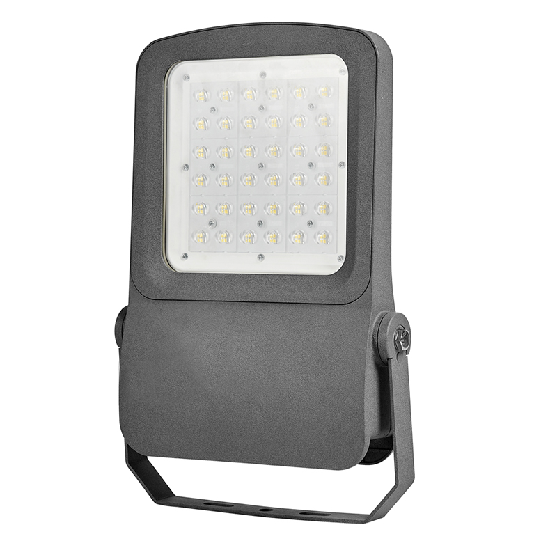 Lampu Outdoor LED Flood Light 10 W 20 W 30 W 50 W 100 W dengan PIR Sensor Gerak Detektor AC110V Lampu Sorot