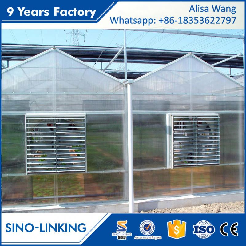 SINOLINK good daylighting Polycarbonate sheet greenhouse farming for tomatoes